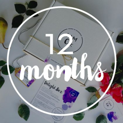 12 month healthy delight box subscription