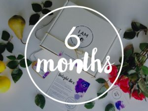 6 month subscription to the delight box by I Am Co